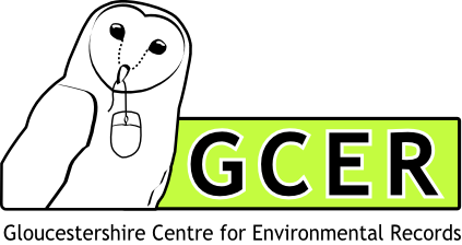 The new GCER logo, showing a barn owl with a computer mouse in its beak. His name is Piers. (The owl, not the mouse. The mouse's name is Algernon.)