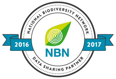 the NBN Data Partner badge